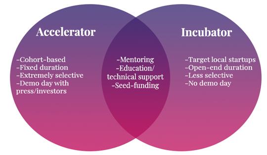 Accelerator and incubator