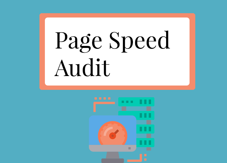 Page Speed Audit